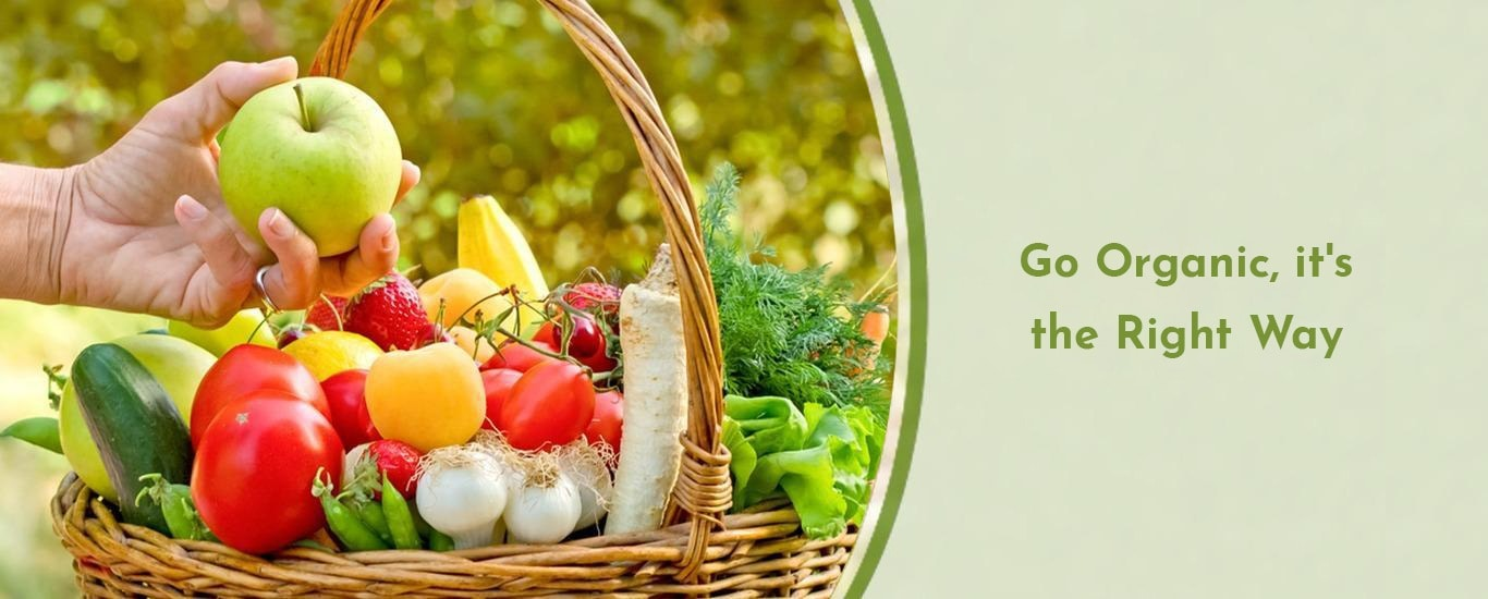 Sustainable Living Integrated Solution Pvt. Ltd. - Grocery Store and Organic Products Retailer in Karve Nagar, Pune